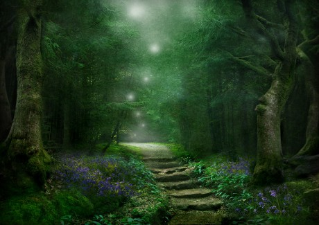 Spirit of the Woods A3 b